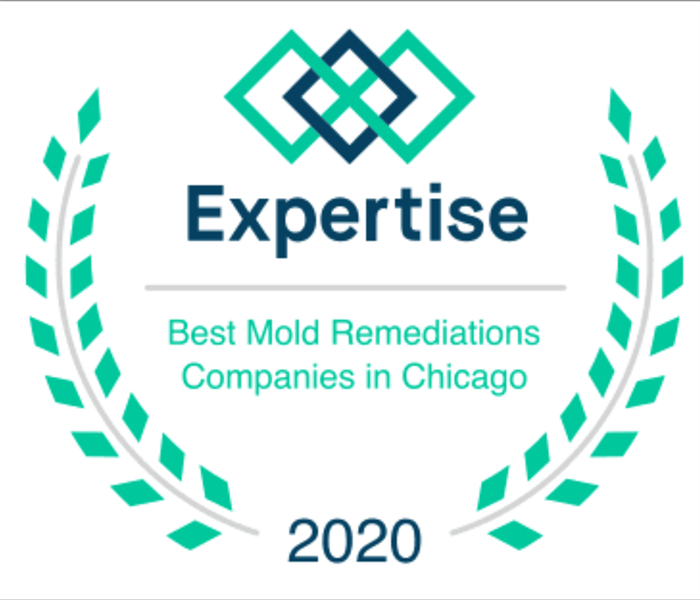 Expertise.com award for Best Mold Remediation Companies in Chicago