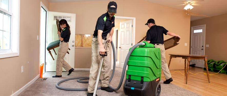 Mount Prospect, IL cleaning services